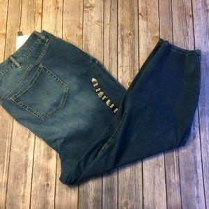 NWT Torrid Premium Jeans